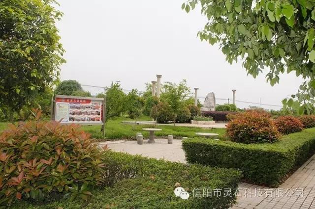 信阳市万博app客户端科技有限公司花园式厂区